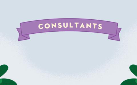 Community Cloud Consultant