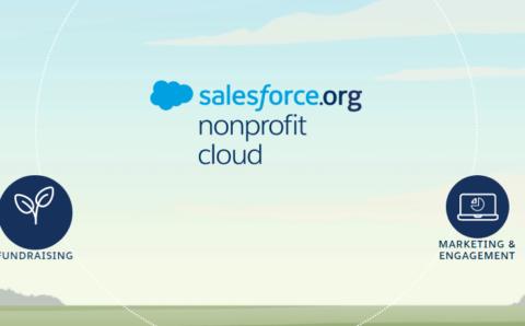Nonprofit Cloud Consultant