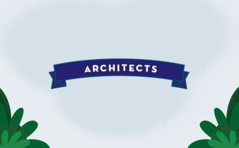 The Salesforce Technical Architect